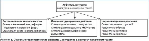 lactocare-1