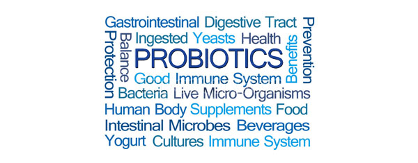 Probiotics Word Cloud on White Background