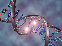 genetica-evolucion-humanan