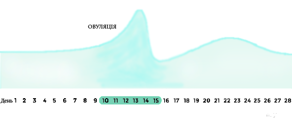 ovulation-diagram